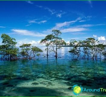 Island-indium-popular photo-Indian islands
