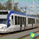 Transport in the Netherlands. Public transport in the Netherlands - species development