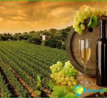 Ukrainian wine-red, dry white wine, the best-