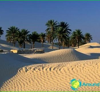 tours-in-Tunisia-holidays-in-Tunisia-photo tour