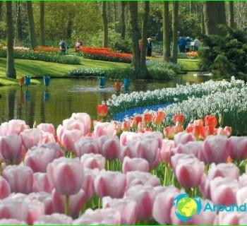 Holiday Netherlands - tradition. National holidays Netherlands