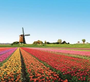Holland: photos, description, interesting facts