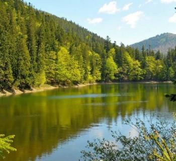 Reserves-Ukraine-national-natural