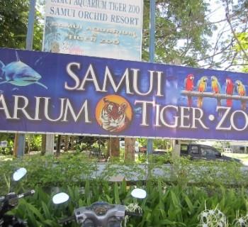 Zoo-on Samui photo-price-work-hours-a