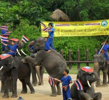 Zoo Bangkok photo-price-work-hours-a