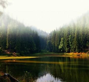 national parks Ukraine, the list of photo-description