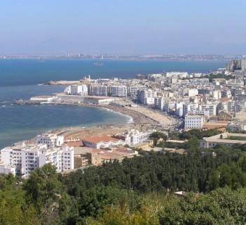 capital of Algeria-card-photo-kind-in-the capital of Algeria