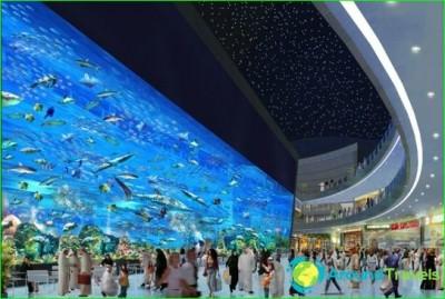 Dubai shopping-shopping-centers-and-market-in-dubai