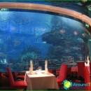 Best Restaurants Dubai-photo-prices