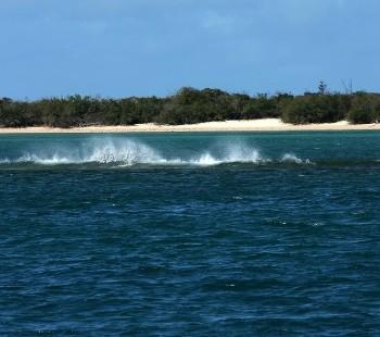 Arafura Sea-card-photo-coast-Arafura