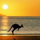 drive-in-australia