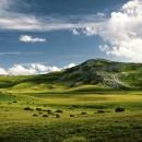 drive-in-Macedonia