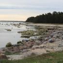 Coast-Estonian-photo-description
