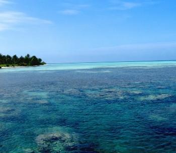 Javanese-sea-map, photo-coast-sea-Javanese