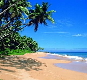 self-journey-in-Sri Lanka