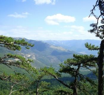 Reserves-Crimea-national-natural