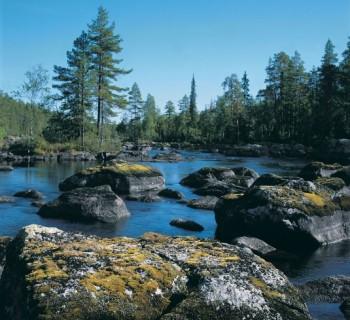 Reserves Karelia-national-natural