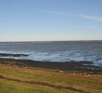 The Wadden Sea-card-photo-coast-Wadden-Sea