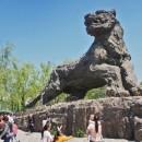 Zoo-Beijing-photo-price-work-hours-a-reach