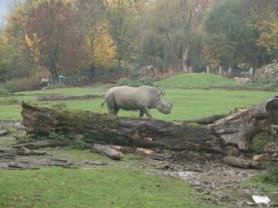 Zoo Salzburg-photo-price-work-hours-a