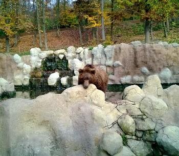 Zoo Brno photo-price-work-hours-a-reach