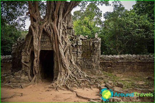 Vacanza in cambogia nel mese di novembre prezzi e for Dove andare in vacanza a novembre in italia