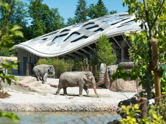 zoo zürich tickets