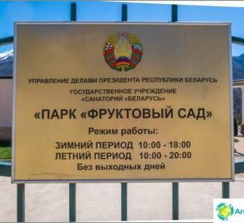 park-fruit-garden-krasnaya-polyana-roller-skates-and-skateboard