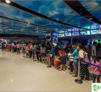 the-oceanarium-at-sea-life-bangkok-ocean-world-fish-and-shark-feeding