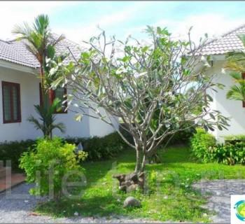 231-flower-garden-home-2-bedroom-house-near-bigc-for-18-25-thousand