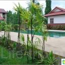 219-maenam-relax-house-1-bedroom-houses-maenam