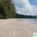 beach-pan-pan-beach-krabi-long-and-absolutely-wild