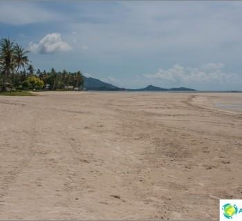 beach-nahai-nahai-beach-patrimony-windsurfers