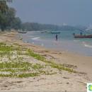 beach-tao-or-turtle-near-mountain-khao-tao