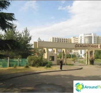 rest-abkhazia-pitsunda