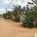 cambodia-instead-thailand-exploration-future-wintering
