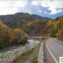 lagonaki-plateau-autumn-beauty-2000-meters