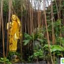 wat-saket-wat-saket-golden-mount-temple-bangkok-look-at-atmosphere-home
